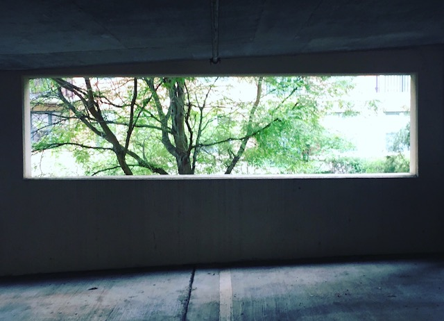 parking garage and tree